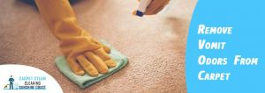 Remove Vomit Odors From Carpet