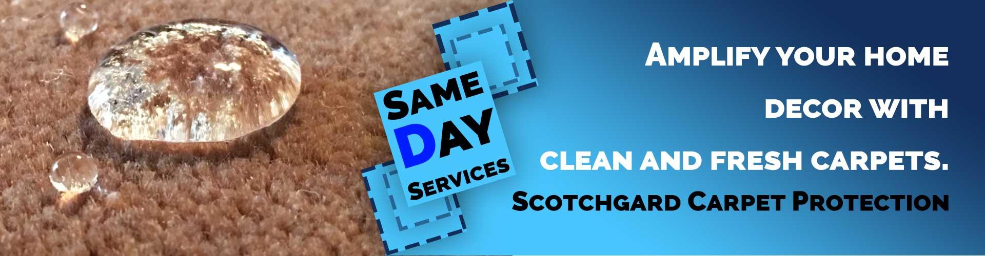 Sctchgard carpet protection